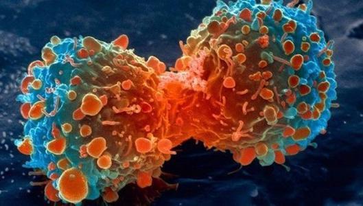 少吃香肠烤肉 预防癌症的生活保健小常识